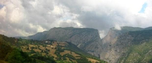 'Örnek orman' Türkiye'de