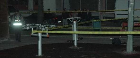 Parkta kardeşlere bıçaklı saldırı: 2 ölü