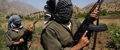 PKK, eski AK Partili başkanı serbest bıraktı