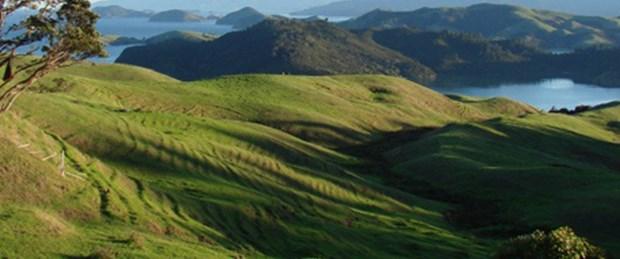 Silivri, Çatalca ve Beykoz'da 6 bin hektar 2B'de
