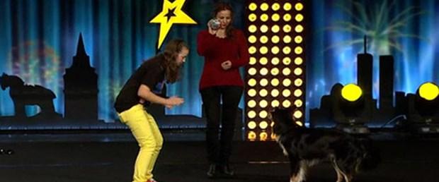 Siz hiç Gangnam Style yapan köpek gördünüz mü?