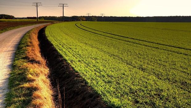 tarım.jpg
