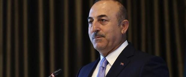 dışişleri bakanı mevlüt çavuşoğlu suriye140418.jpg