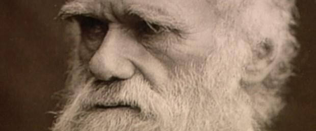 Teknoloji insan evrimini durdurdu mu?