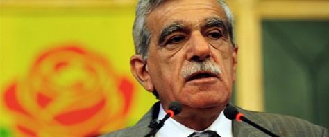 Türk: Anayasa değişmeden açılım olmaz