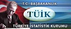 Türkiye bilişim teknolojileri kullanım istatistikleri