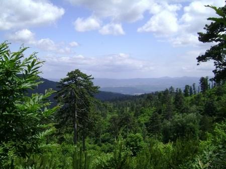 Tarih, oksijen ve trekking!