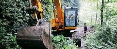 Türkiye'nin yağmur ormanlarını kestirme!