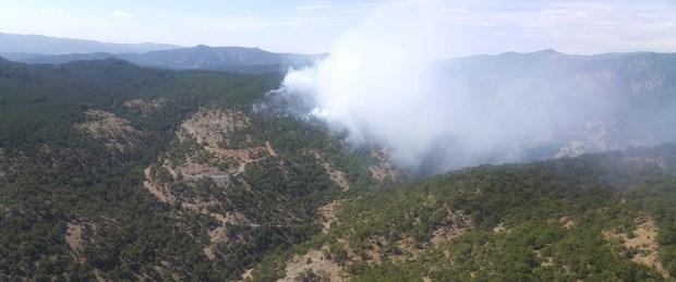 uşak orman yangını.jpg