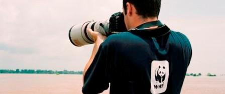 WWF'den kısa film yarışması