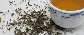 Yeşil çay mucizesi kanıtlandı