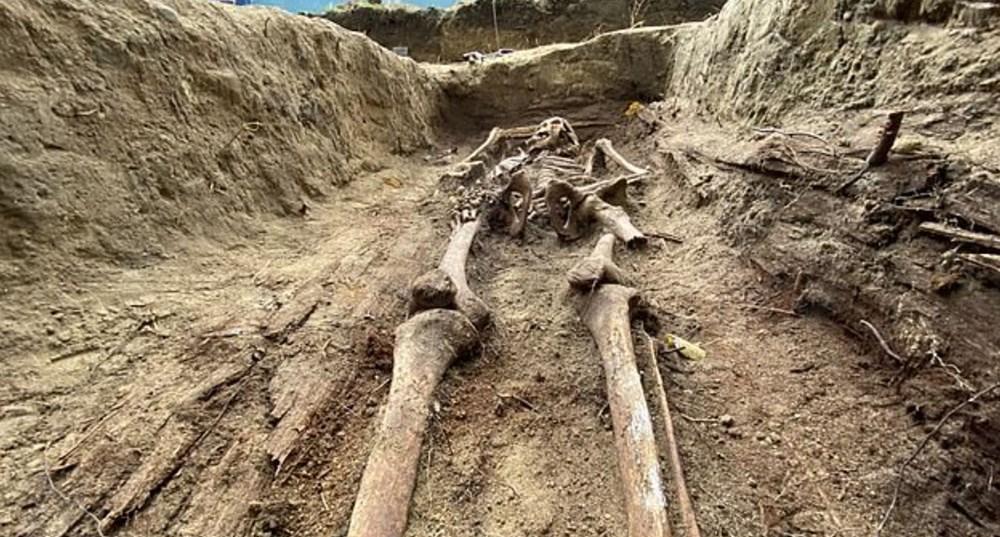 İkinci Dünya Savaşı'nda öldürülen Katolik rahibelerin kemikleri arkeolojik kazıdabulundu - 2