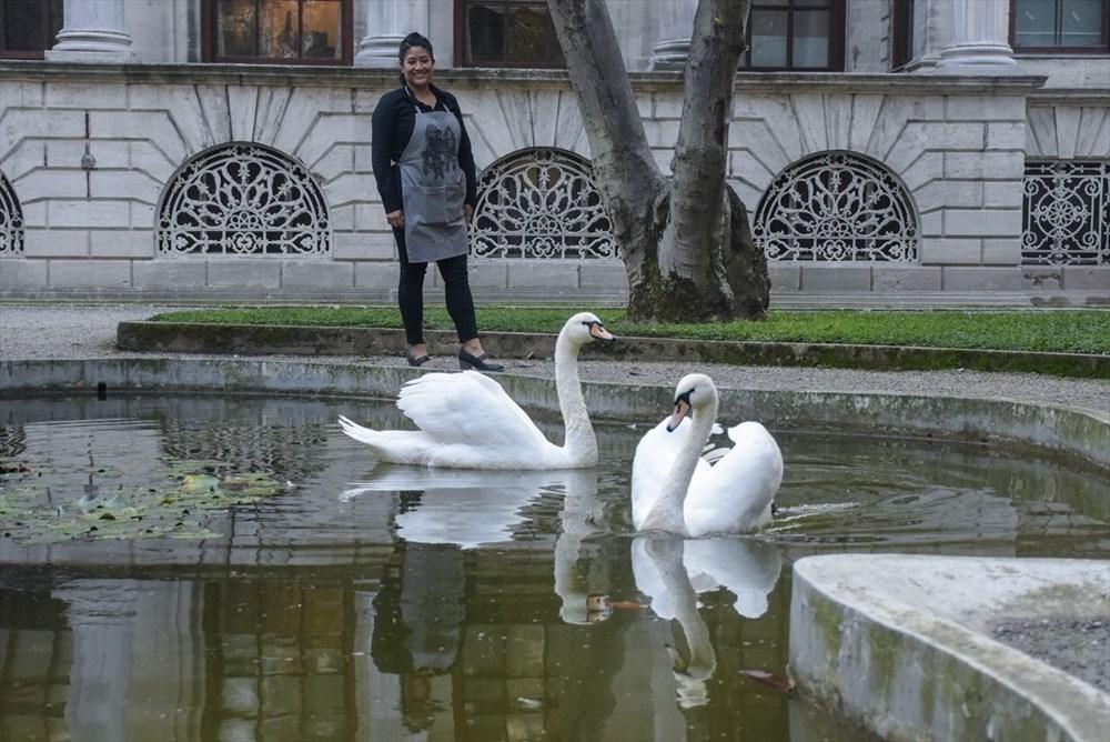Meksikalı sanatçı Sofia Chavez'in Dolmabahçe Sarayı'na uzanan sanat yolculuğu - 6