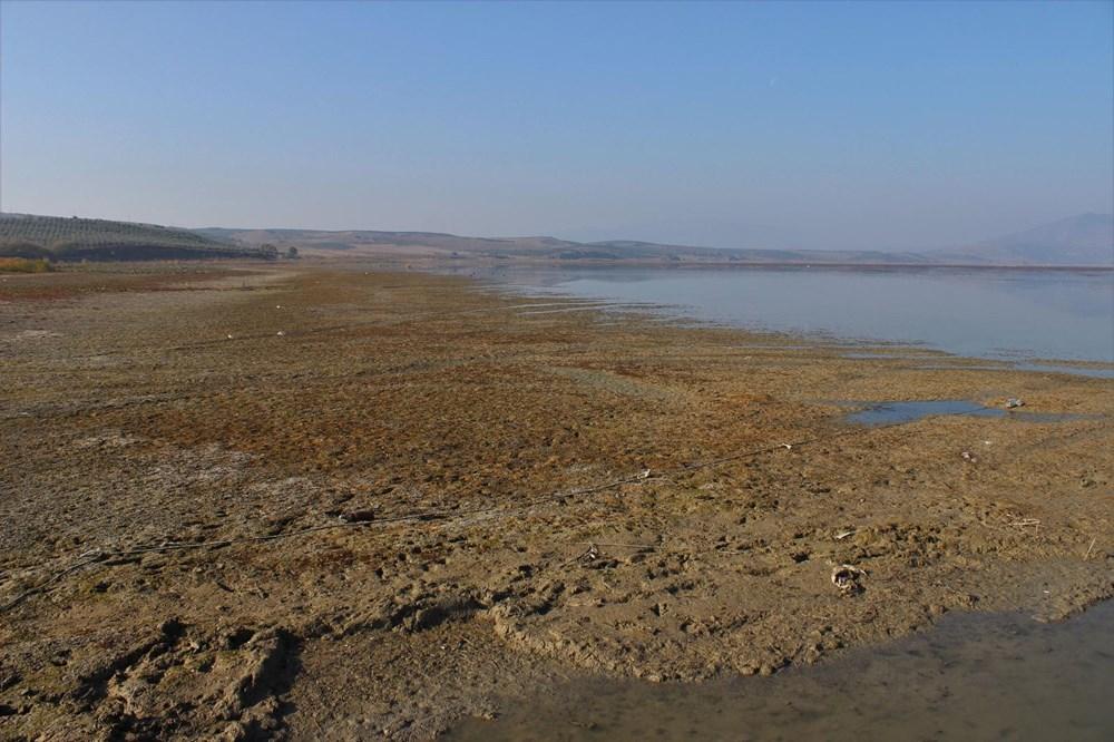 'Kuş cenneti' Marmara Gölü'nde derinlik 40 santimetreye düştü - 5