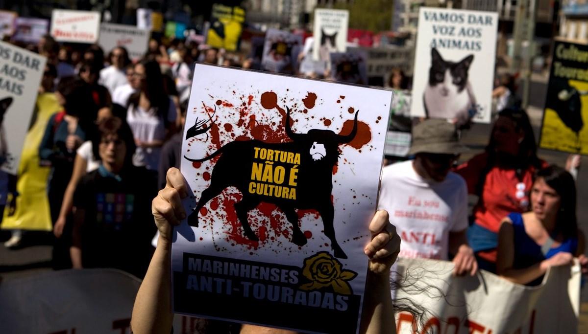 Portekiz'de 16 yaş altına 'boğa güreşi' yasağı