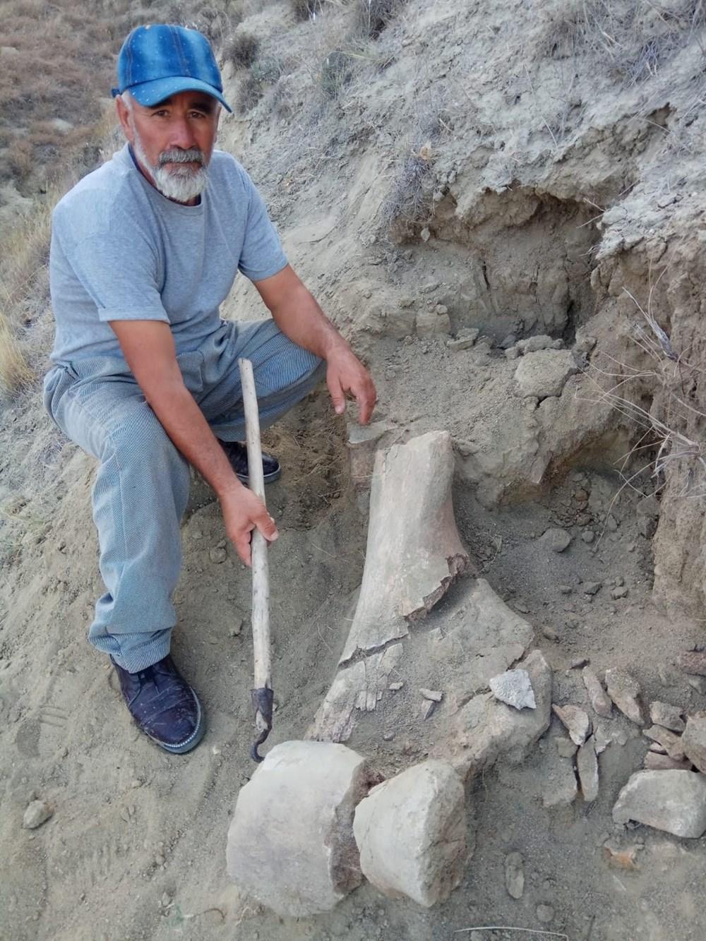Amasya'da bulunan cisimler için mamut fosili heyecanı - 10