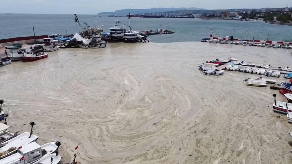 Tekirdağ kıyılarında müsilaj etkisini yitirdi - 10