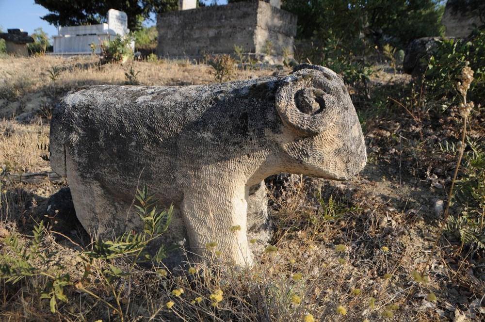 Koçbaşı ve taş işlemeli mezarlar definecilerin talanına uğradı - 3