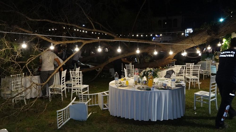 Antalya'da kır düğününde'ağaç' devrildi: 1 ölü - 4