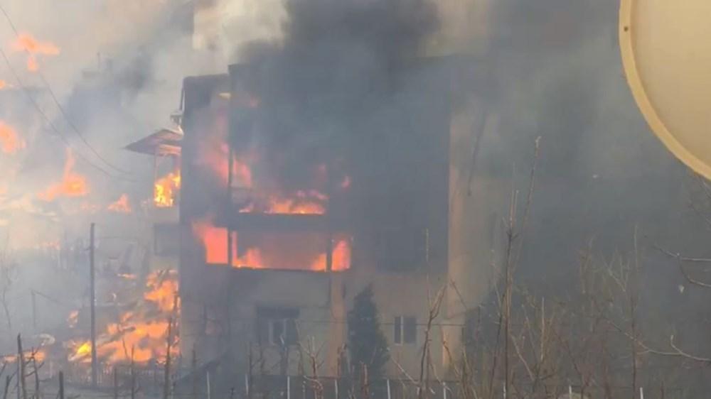 Artvin'deki yangın kontrol altında - 12