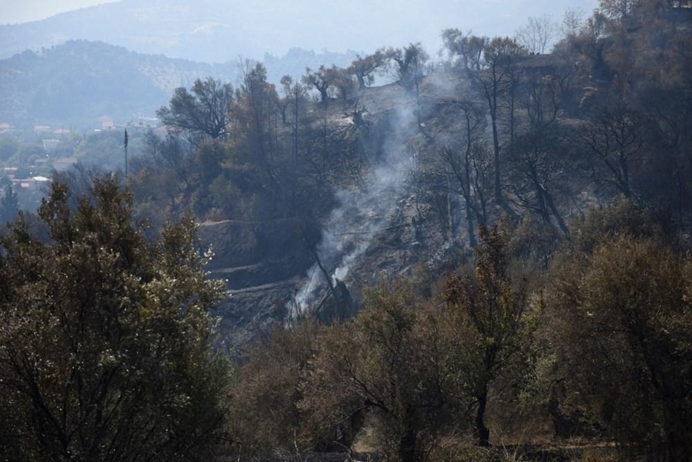 Akdeniz alev aldı: Yunanistan ve İtalya'da orman yangınları sürüyor - 3
