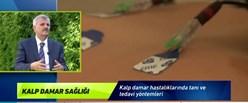 vlcsnap-2016-08-15-14h37m32s172