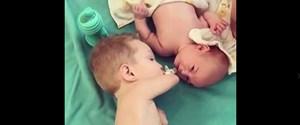 kolsuz bebek