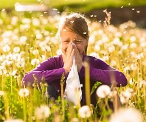 16-06-2015-214007bahar-alerjisi-saman-nezlesi.jpg