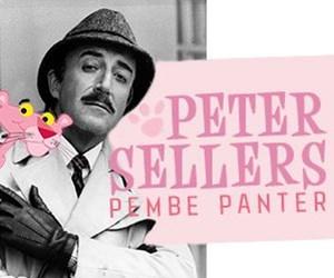 PETER SELLERS-PEMBE PANTERkare.jpg