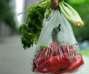 Ortak Gelecek Sıfır Atık sebzeler ve poşet.jpg