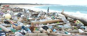 Ortak Gelecek Sıfır Atık deniz sahili poşetler çöplük.jpg