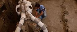 mamut_fosil_5