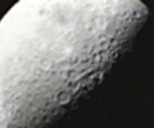 Ay neden vuruldu 'rehberi'