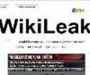 Wikileaks meydan okudu