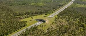 52-Yaban-Hayvanları-için-Ekolojik-Köprü-Projeleri-Sürüyor.jpg