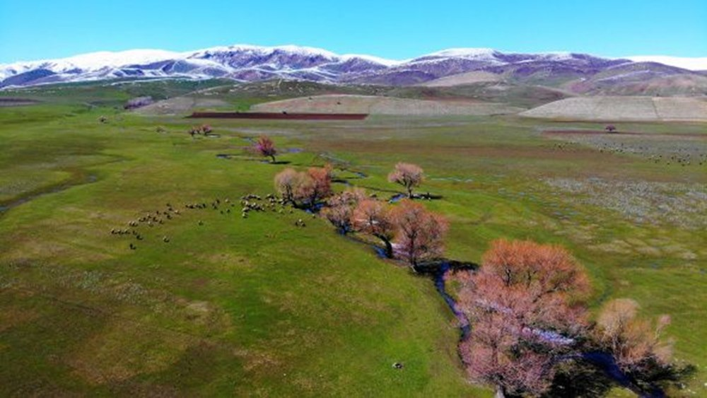 Two seasons together in Muş - 3