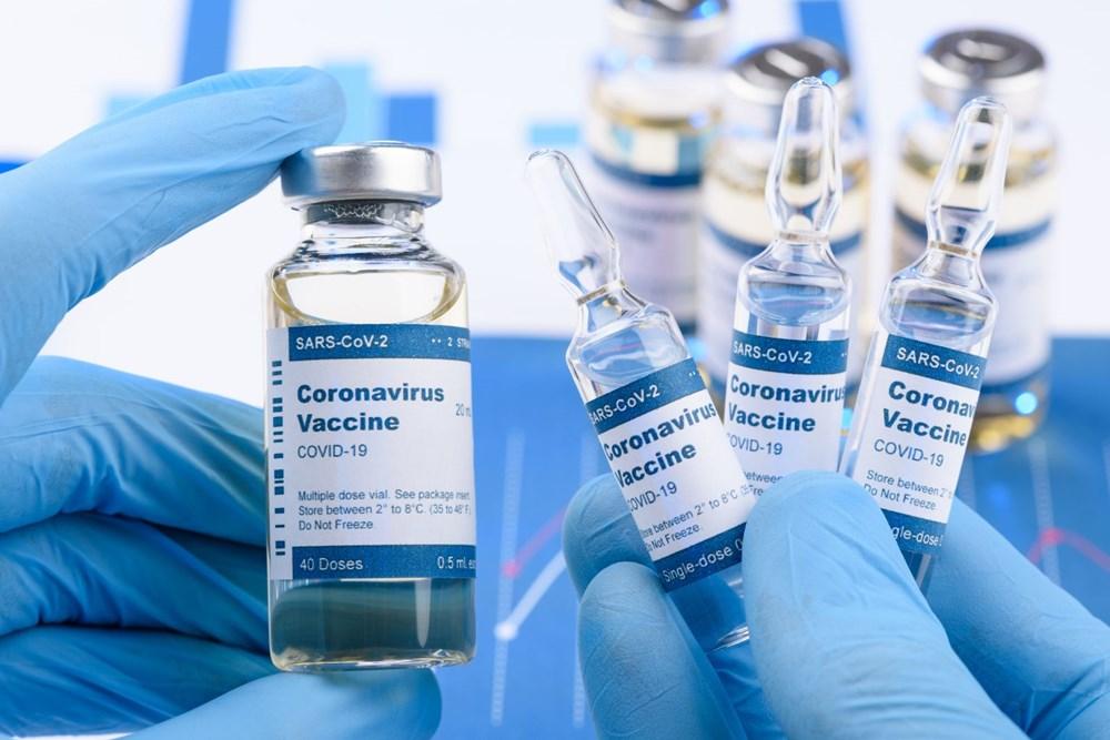 Yaygın alerjilere sahip olan kişiler için corona virüs aşıları risk oluşturuyor mu? Bilim insanları yanıtladı - 2
