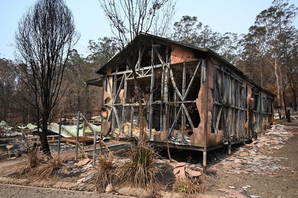 Avustralya'daki yangınlar 3 milyar hayvanı etkiledi - 9