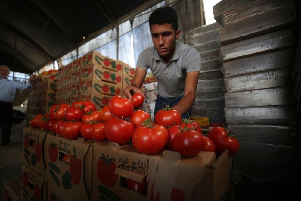 İsrail'in kararına tepki: Domates sapını tehdit gördüler - 6