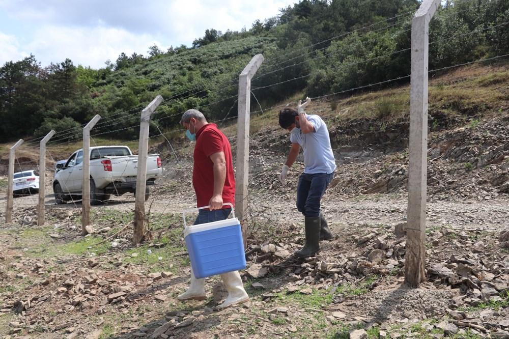 Alibeyköy Barajı'nda balık ölümleri: İnceleme başlatıldı - 7