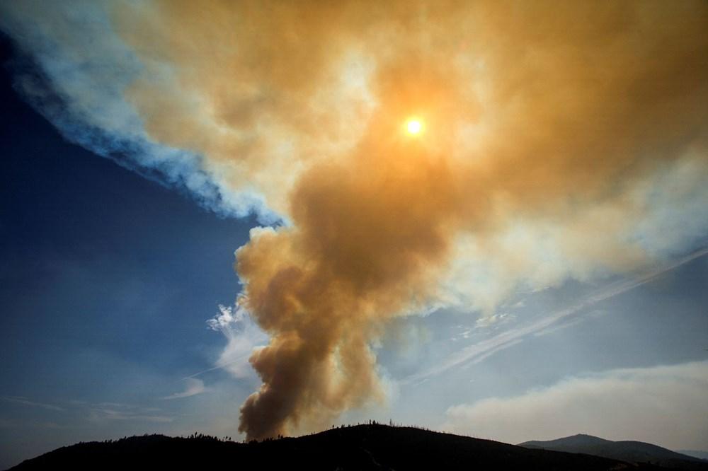 California'daki yangınlarda rekor - 4