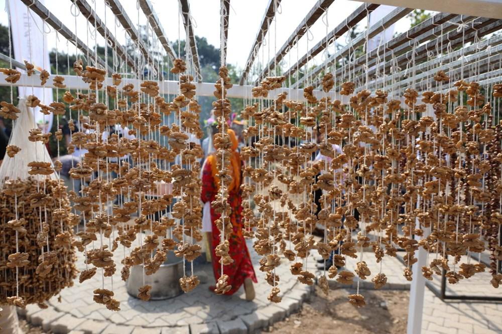 GastroAntep Festivali, fıstık hasadı ve şire yapımı ile başladı - 8