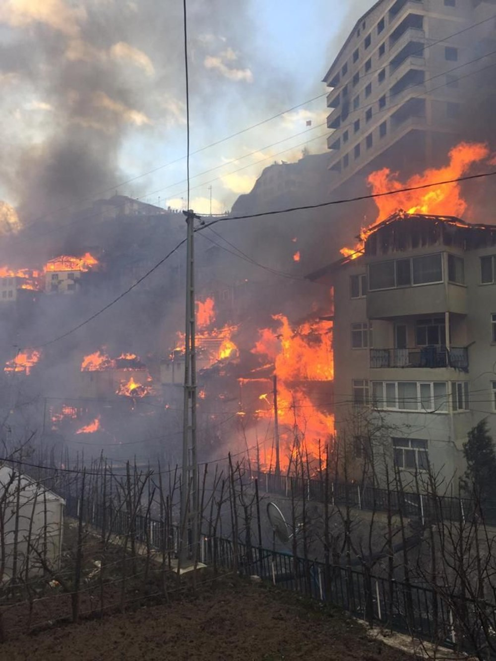 Artvin'deki yangın kontrol altında - 6