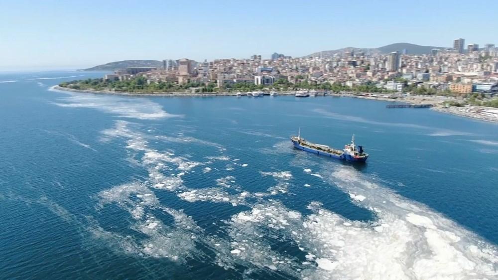İstanbul sahillerini istila eden deniz salyalarında yoğunluk arttı - 4