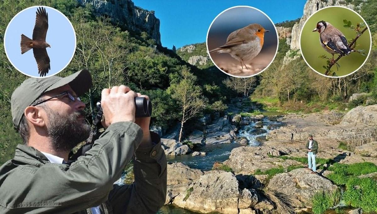 10 yıldır yaban hayatının izini sürüyor: Ballıkayalar'ın kuş dedektifi
