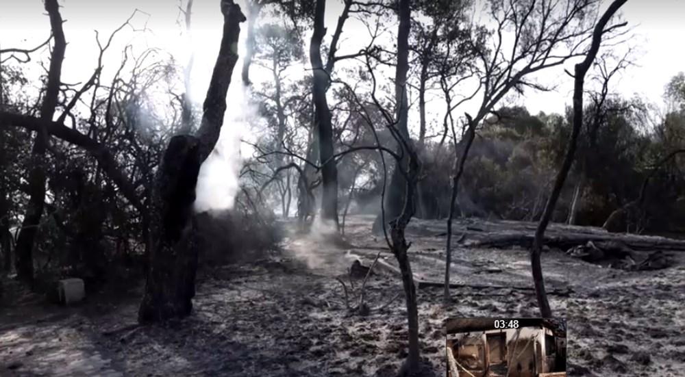 Akdeniz alev aldı: Yunanistan ve İtalya'da orman yangınları sürüyor - 50