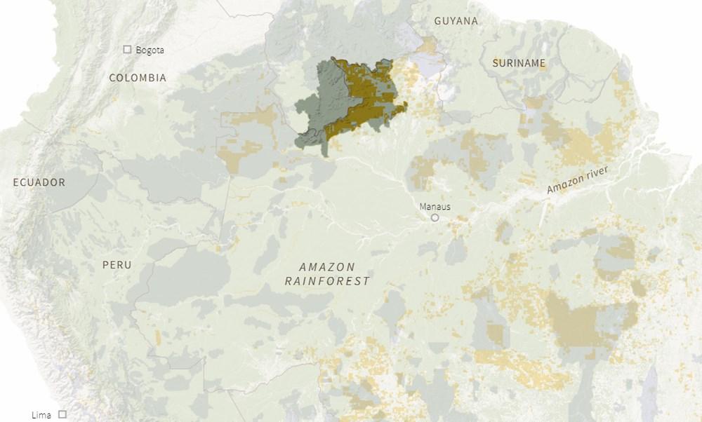 Amazon'un son  kabilesi altın avcıları nedeniyle tehlikede - 11