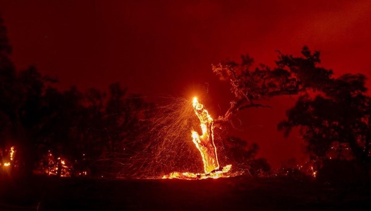 California'ya düşen yıldırımlar büyük yangınlara neden oldu