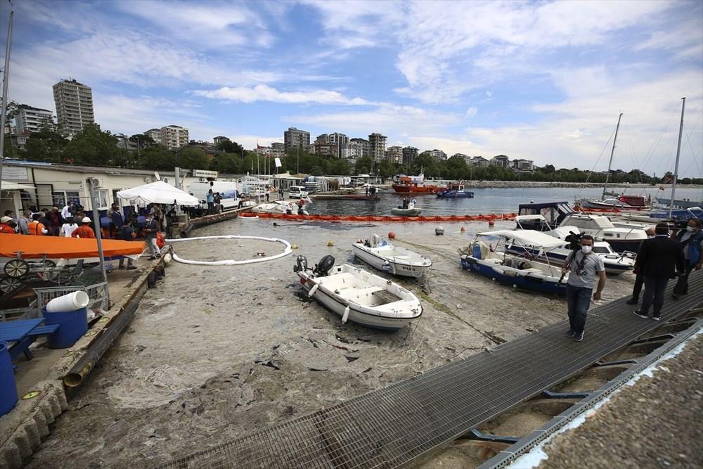 Marmara Denizi Eylem Planı: Müsilaj (Deniz salyası) temizliği başladı | NTV