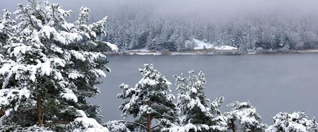Abant'ta kar sevindirdi
